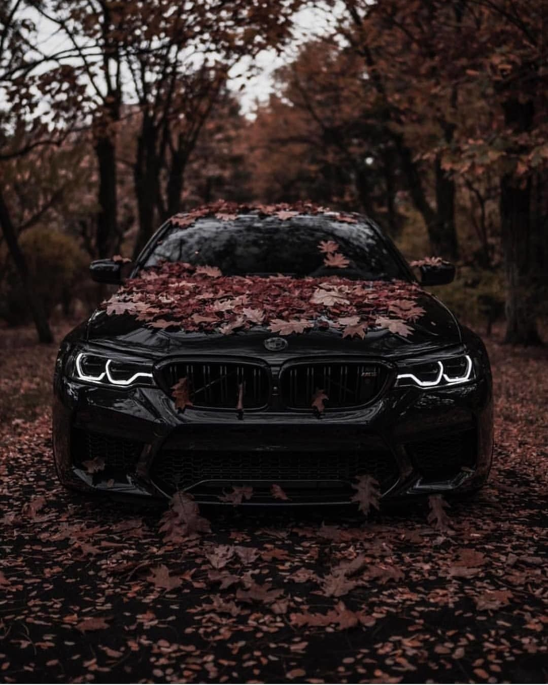 Tag For M5 Bmw M5 E60 Iphone Wallpapers Wallpaperboat