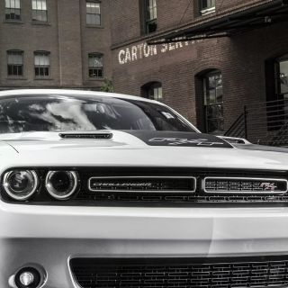 20 dodge iphone wallpapers wallpaperboat 5 wallpaper challenger - small