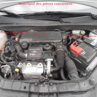 Schema Engine Ford Fiesta 1 4 Tdci Photo - small